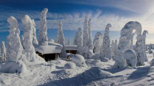 Z powodu zimna odwołano Święto Mrozu. Termometry pokazały -38,7 stopnia